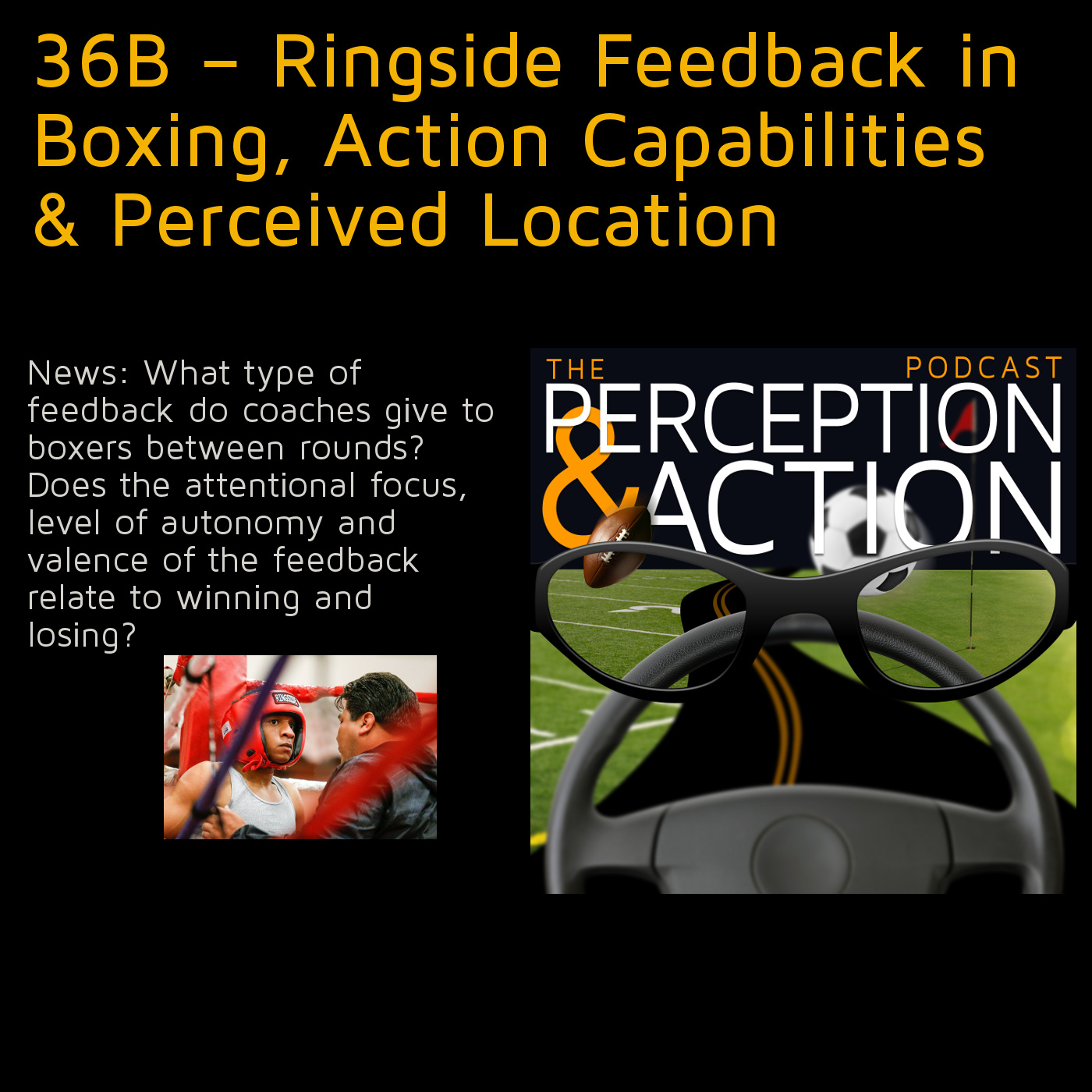 36B – Ringside Feedback in Boxing, Action Capabilities & Perceived